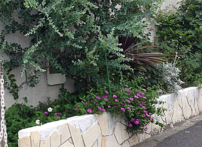 植栽や植木鉢など植物をうまく配置するのも、看板ひとつともいえますね。くれぐれも、植栽配置や植木鉢は、メンテナンスの手間と配置数(予算)をケチらないように。
