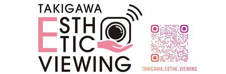 takigawa_esthetic_viewing