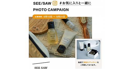 see_saw_camp