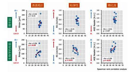 生物学的年齢は肌計測値と有意に相関することを示したグラフ